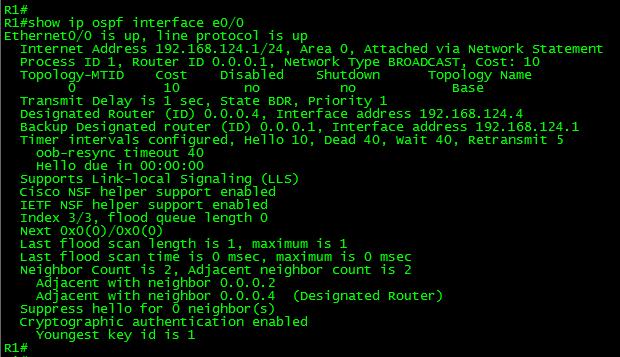 OSPF-NULL-show-ospf-if-e0-0