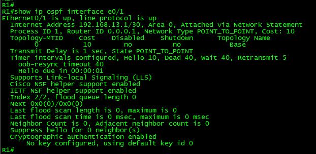 OSPF-NULL-show-ospf-if-e0-1
