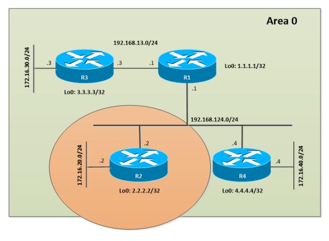 OSPF-PassiveIF