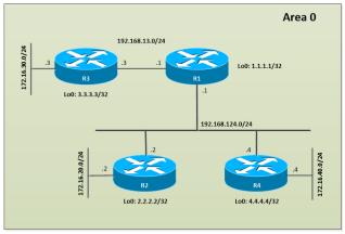 OSPF-SAREA-NTOPOLOGY