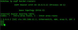 OSPF-CONN-VL-03