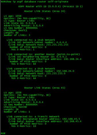 OSPF-CONN-VL-06