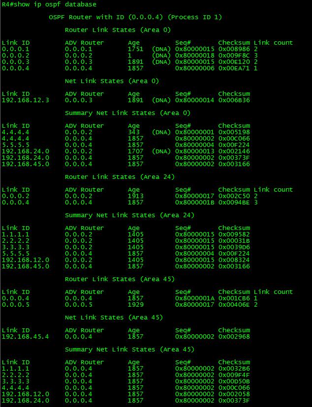 OSPF-CONN-VL-09-1