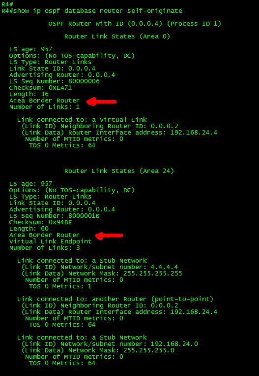 OSPF-CONN-VL-10