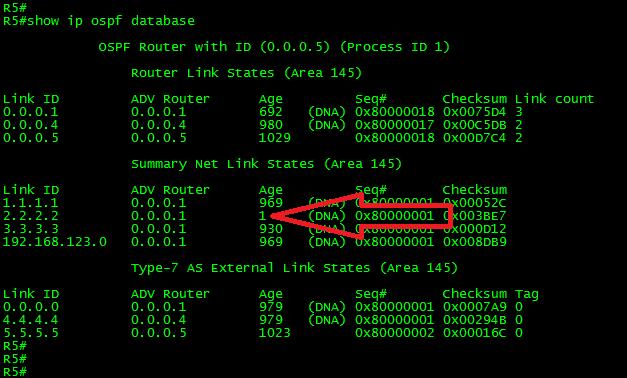 OSPF-LSA-DB-FILTERING-16